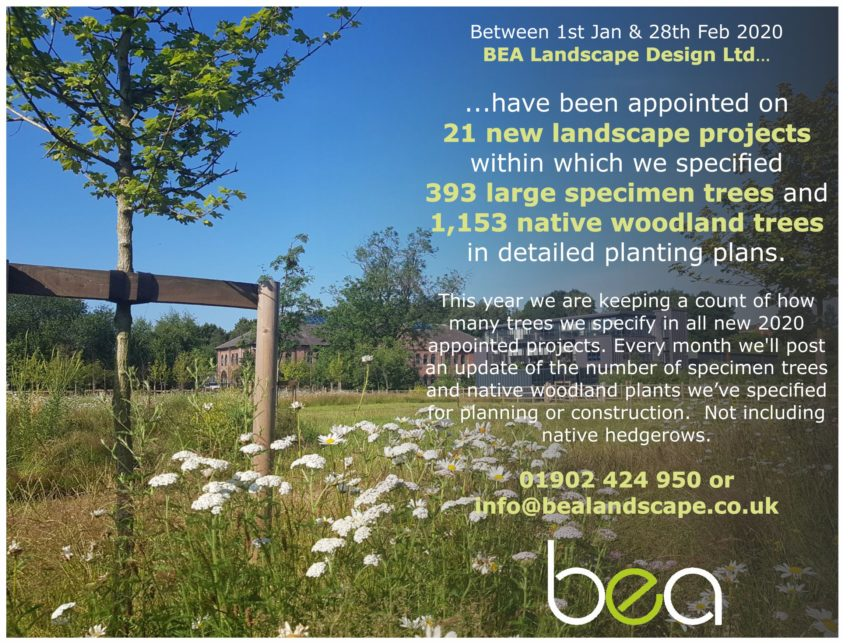 BEA_Tree Count 2_Feb 2020_B